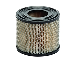 Air Filter For Briggs & Stratton  # 393957