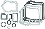 Replacement Gasket Set For Briggs & Stratton # 391662